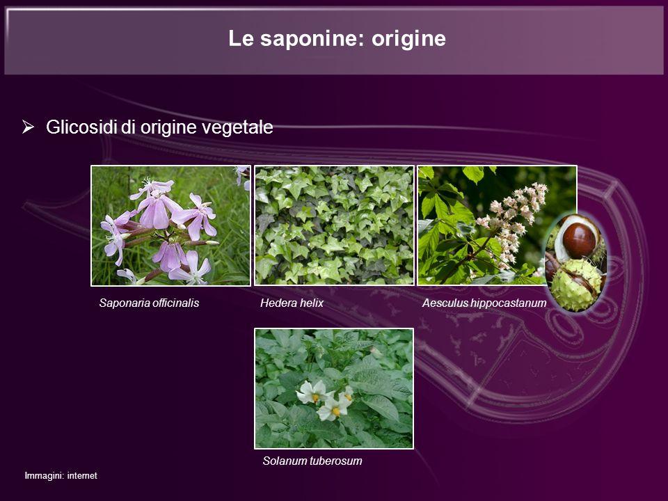 Le saponine: origine Glicosidi di origine vegetale