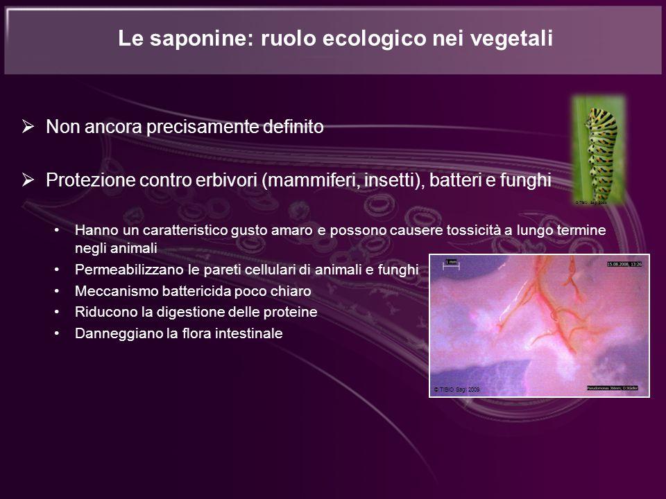 Le saponine: ruolo ecologico nei vegetali