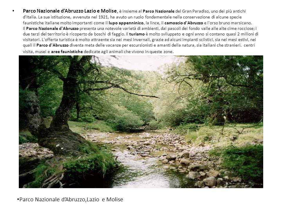 Parco Nazionale d'Abruzzo,Lazio e Molise