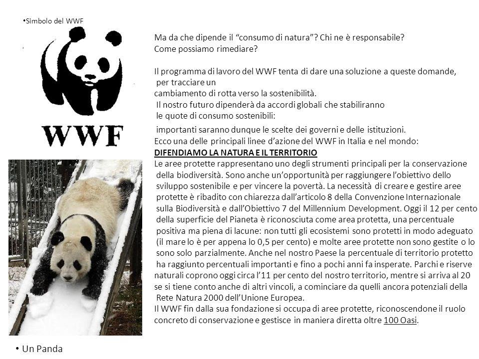 Simbolo del WWF Ma da che dipende il consumo di natura Chi ne è responsabile