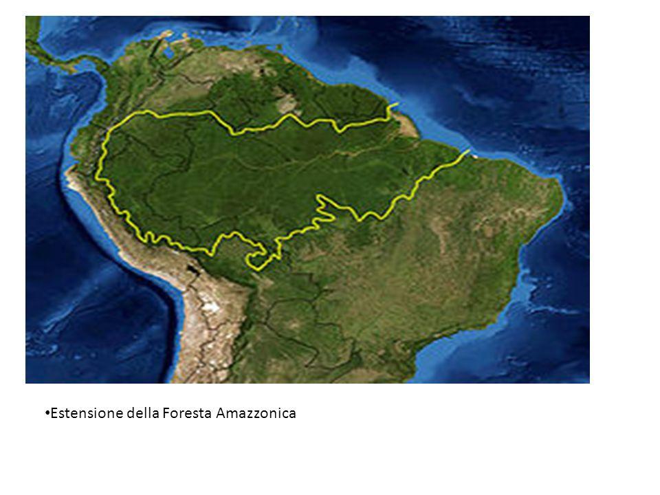 Estensione della Foresta Amazzonica