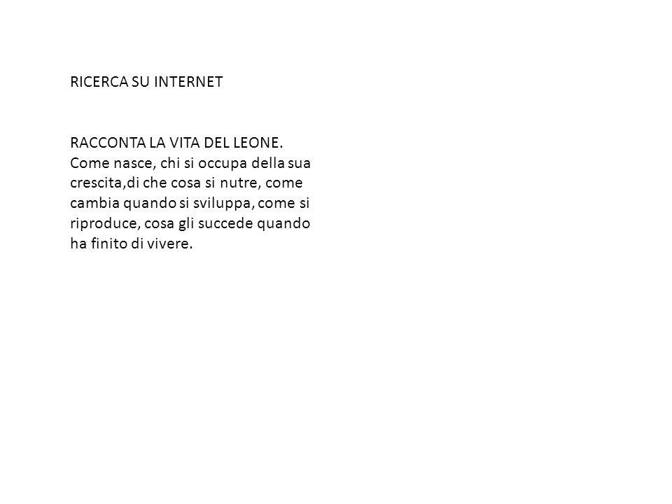 RICERCA SU INTERNET