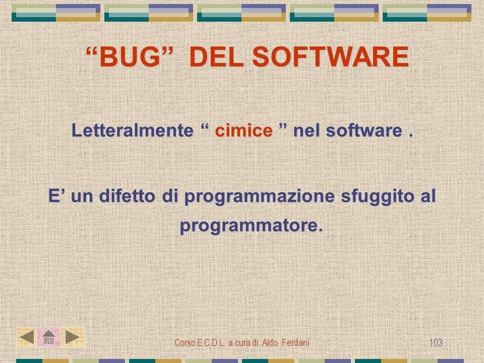 Letteralmente cimice nel software .