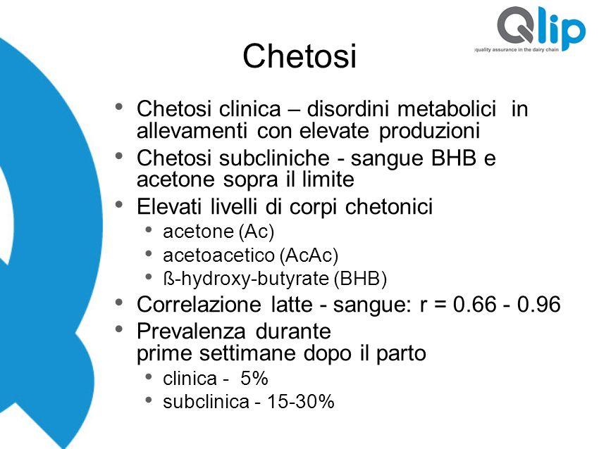 Chetosi Chetosi clinica – disordini metabolici in allevamenti con elevate produzioni. Chetosi subcliniche - sangue BHB e acetone sopra il limite.