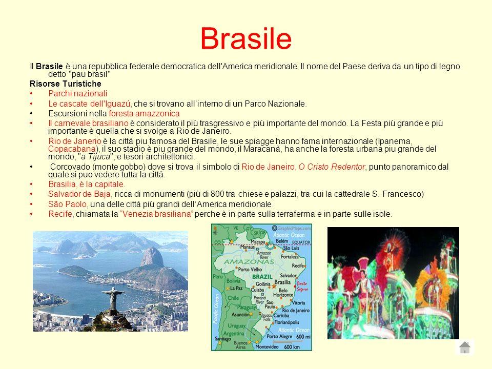 Brasile Il Brasile è una repubblica federale democratica dell America meridionale. Il nome del Paese deriva da un tipo di legno detto pau brasil