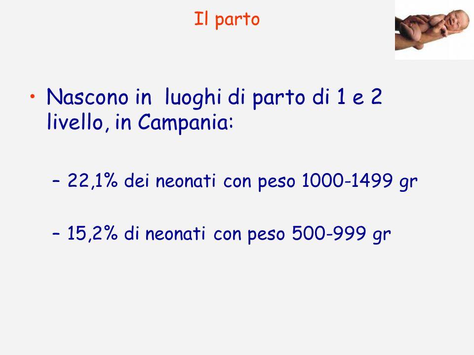 Nascono in luoghi di parto di 1 e 2 livello, in Campania: