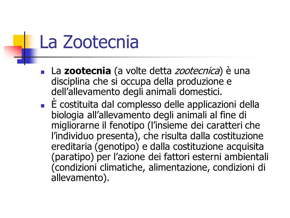 La Zootecnia La zootecnia (a volte detta zootecnica) è una disciplina che si occupa della produzione e dell'allevamento degli animali domestici.