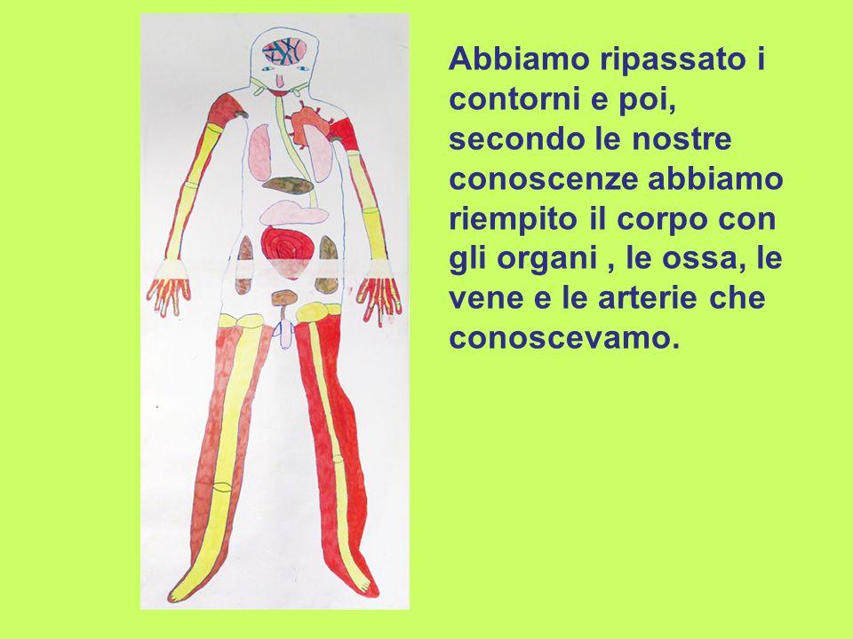 Abbiamo ripassato i contorni e poi, secondo le nostre conoscenze abbiamo riempito il corpo con gli organi , le ossa, le vene e le arterie che conoscevamo.
