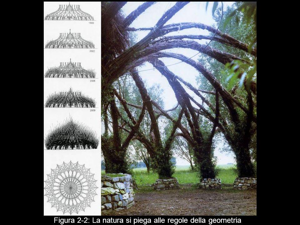 Figura 2‑2: La natura si piega alle regole della geometria