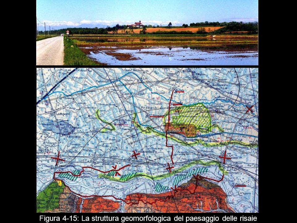 Figura 4‑15: La struttura geomorfologica del paesaggio delle risaie