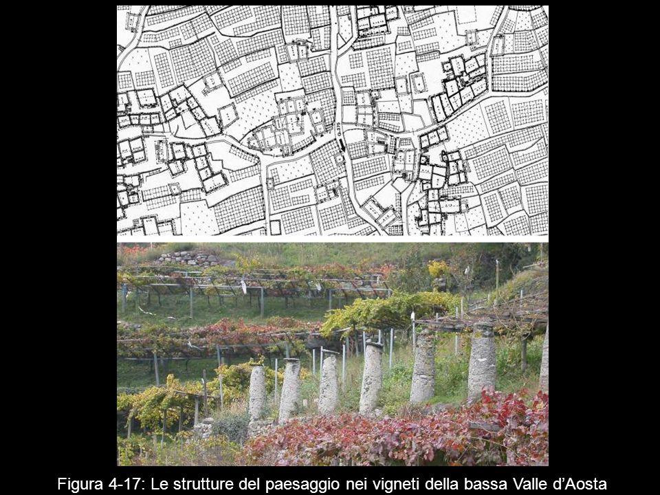 Figura 4‑17: Le strutture del paesaggio nei vigneti della bassa Valle d'Aosta