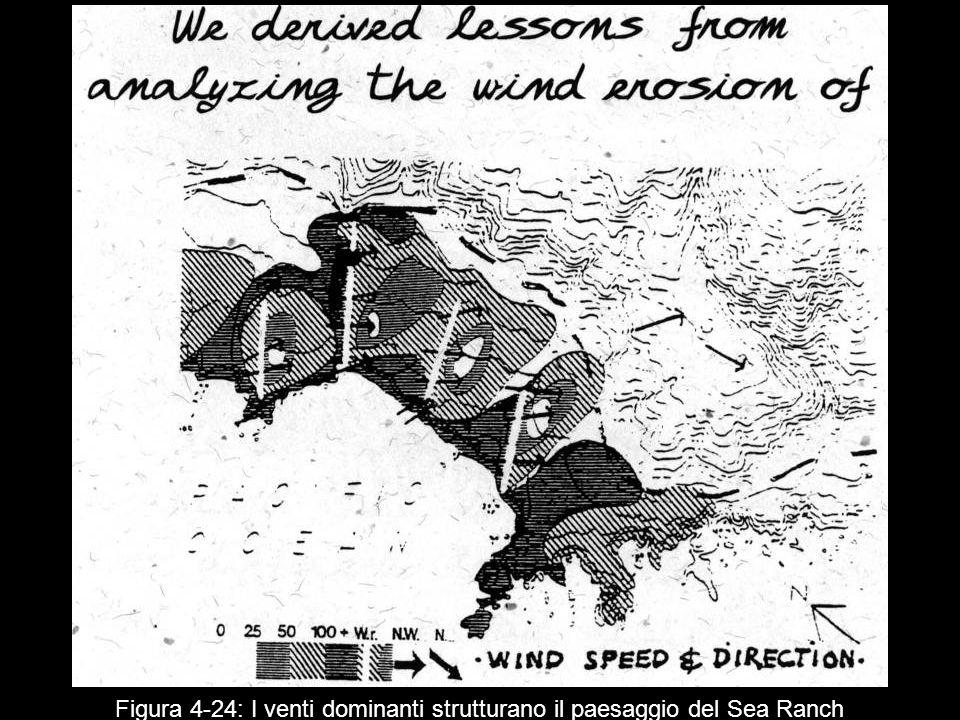 Figura 4‑24: I venti dominanti strutturano il paesaggio del Sea Ranch