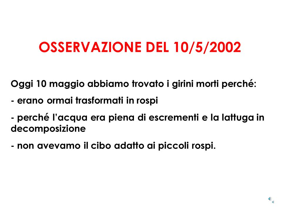 OSSERVAZIONE DEL 10/5/2002 Oggi 10 maggio abbiamo trovato i girini morti perché: - erano ormai trasformati in rospi.