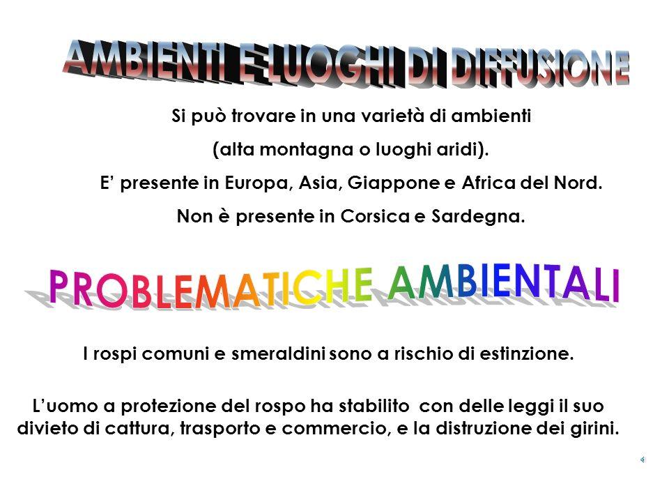 AMBIENTI E LUOGHI DI DIFFUSIONE PROBLEMATICHE AMBIENTALI
