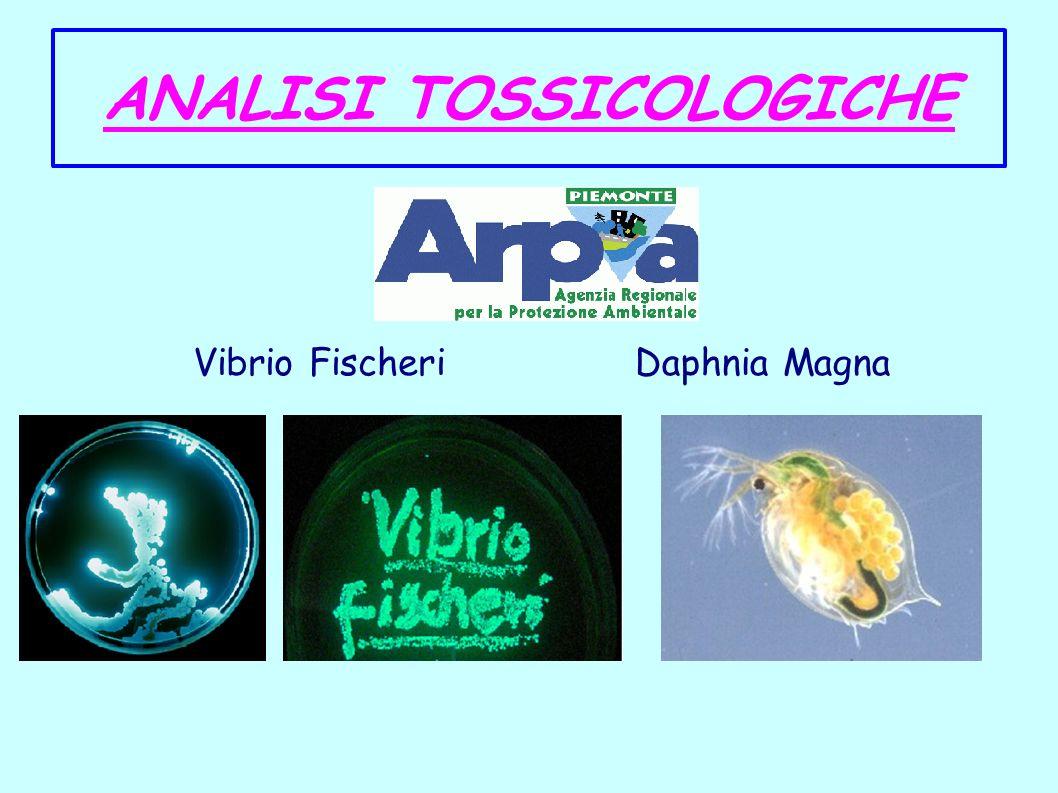 ANALISI TOSSICOLOGICHE
