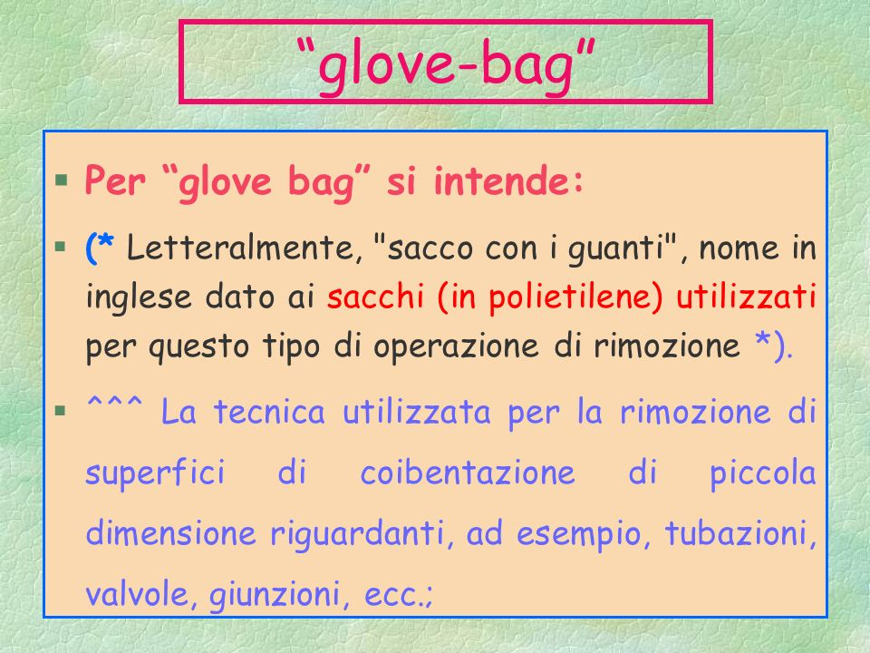 glove-bag Per glove bag si intende: