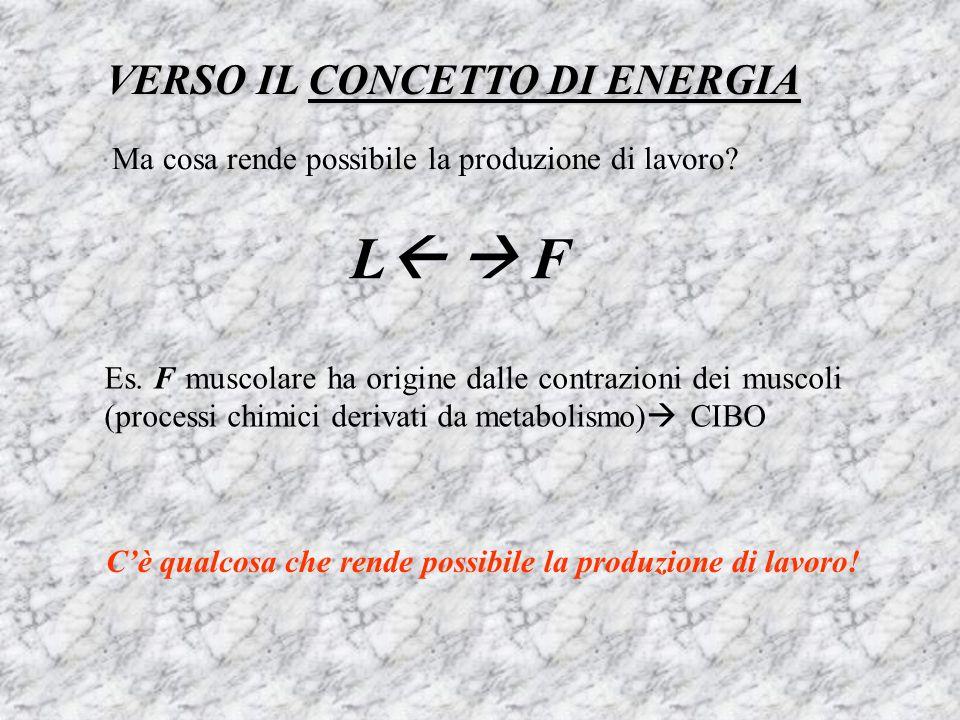 L  F VERSO IL CONCETTO DI ENERGIA