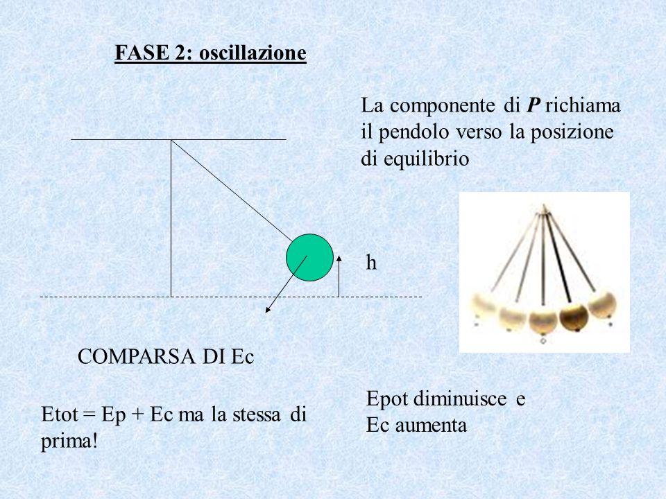 FASE 2: oscillazione La componente di P richiama il pendolo verso la posizione di equilibrio. h. COMPARSA DI Ec.