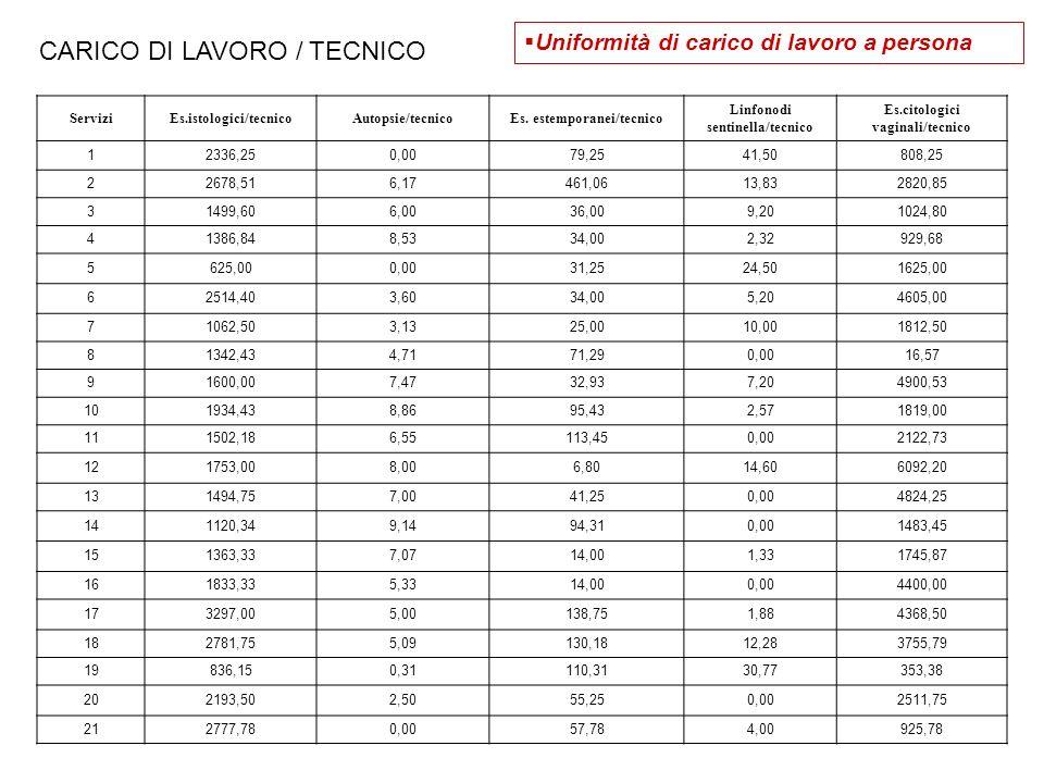 CARICO DI LAVORO / TECNICO