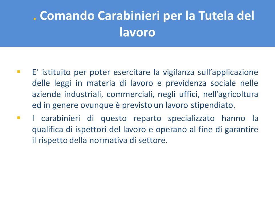 . Comando Carabinieri per la Tutela del lavoro