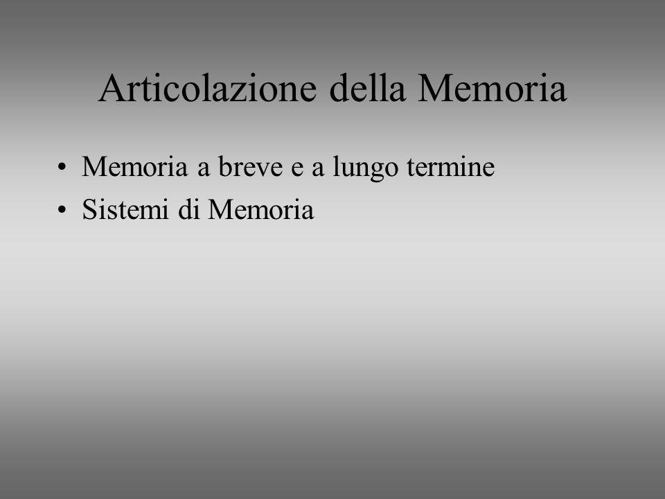 Articolazione della Memoria