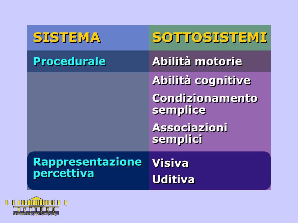 SISTEMA SOTTOSISTEMI Procedurale Abilità motorie Abilità cognitive