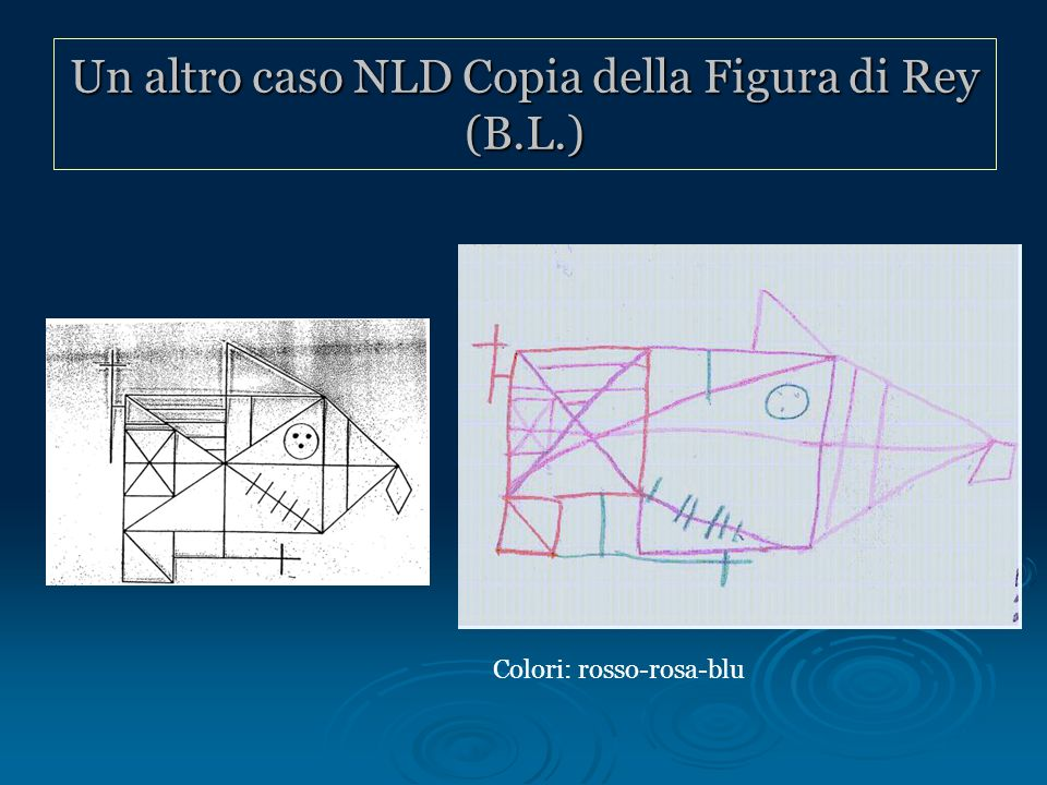 Un altro caso NLD Copia della Figura di Rey (B.L.)