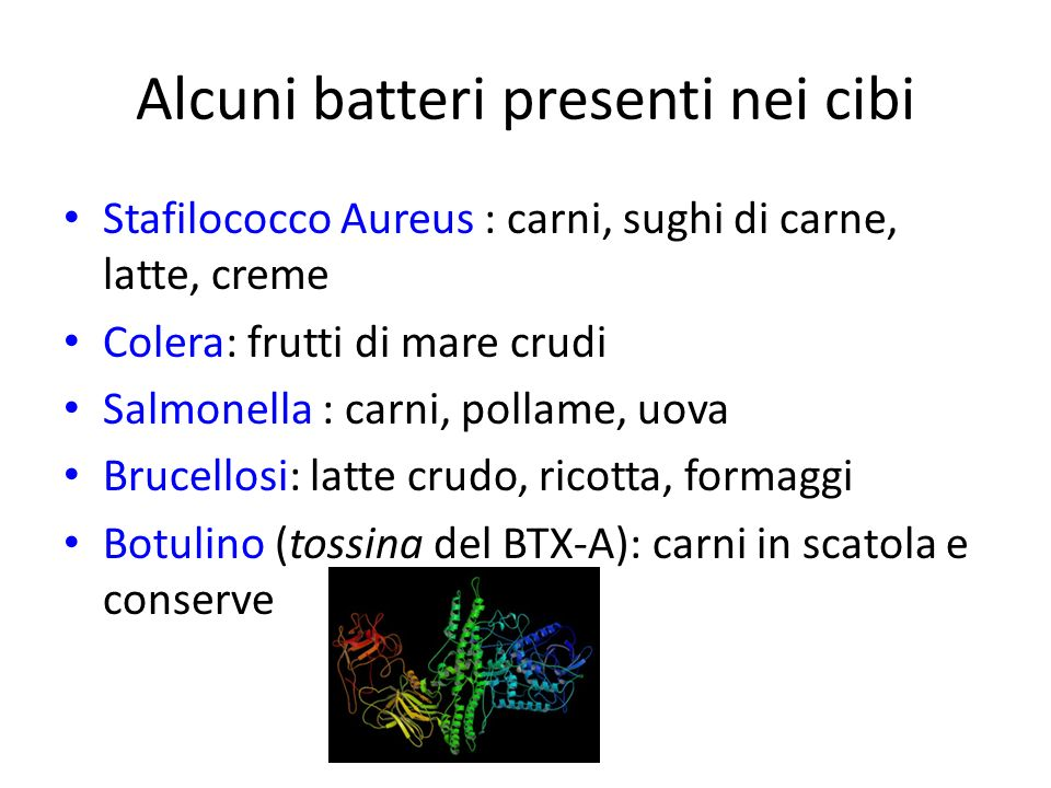 Alcuni batteri presenti nei cibi