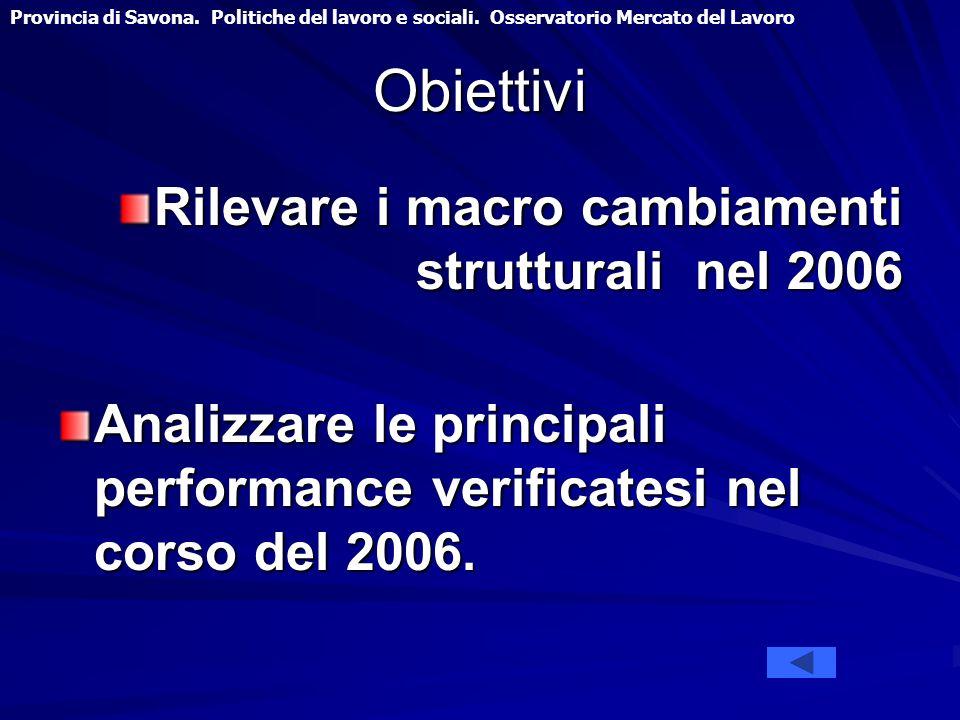 Obiettivi Rilevare i macro cambiamenti strutturali nel 2006