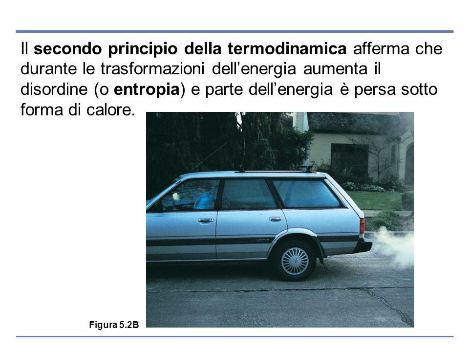 Il secondo principio della termodinamica afferma che durante le trasformazioni dell'energia aumenta il disordine (o entropia) e parte dell'energia è persa sotto forma di calore.
