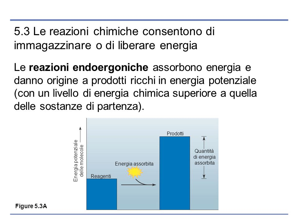 Energia potenziale delle molecole