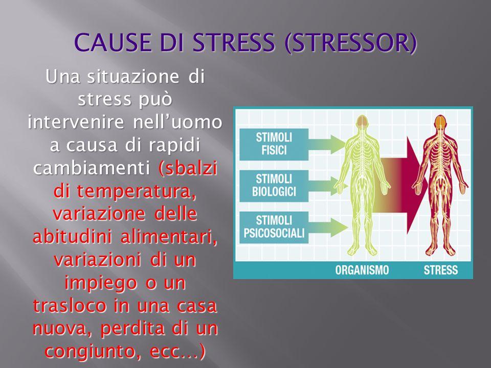 CAUSE DI STRESS (STRESSOR)