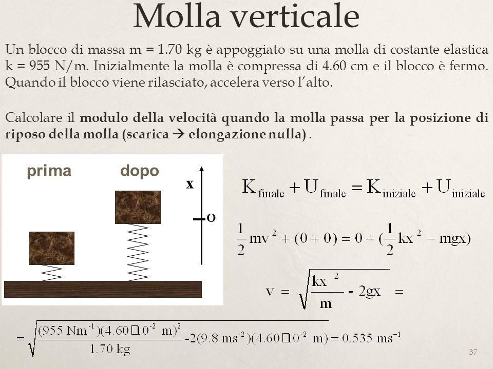 Molla verticale prima dopo x x