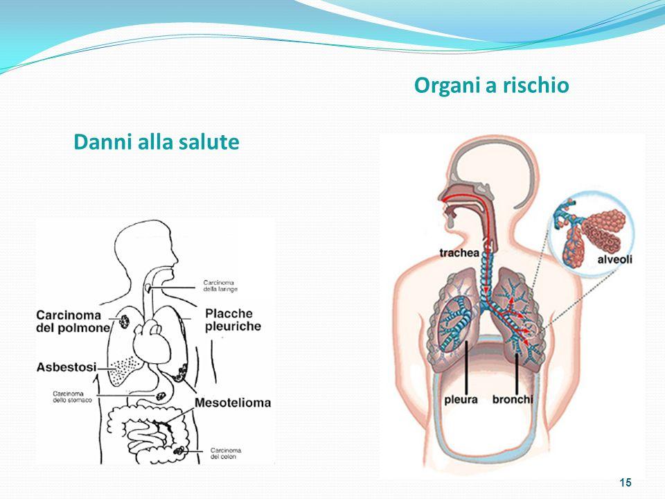 Organi a rischio Danni alla salute
