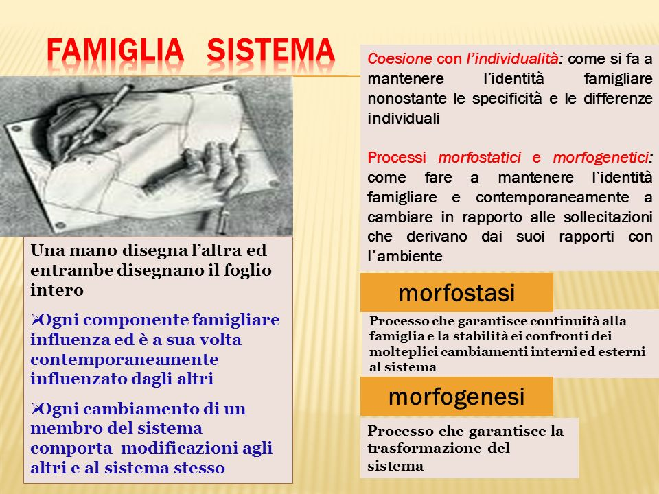 Famiglia sistema morfostasi morfogenesi