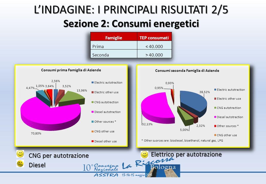 L'INDAGINE: I PRINCIPALI RISULTATI 2/5 Sezione 2: Consumi energetici