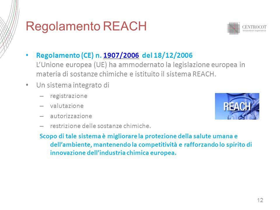 Regolamento REACH