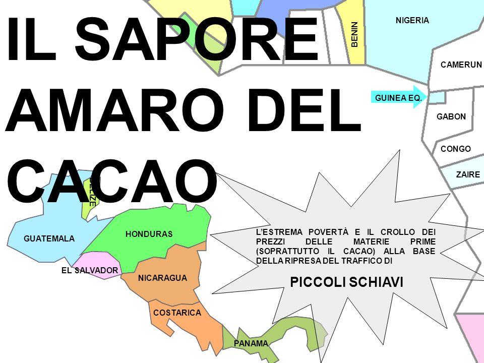 IL SAPORE AMARO DEL CACAO