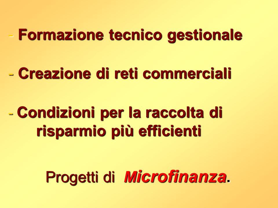 Progetti di Microfinanza.