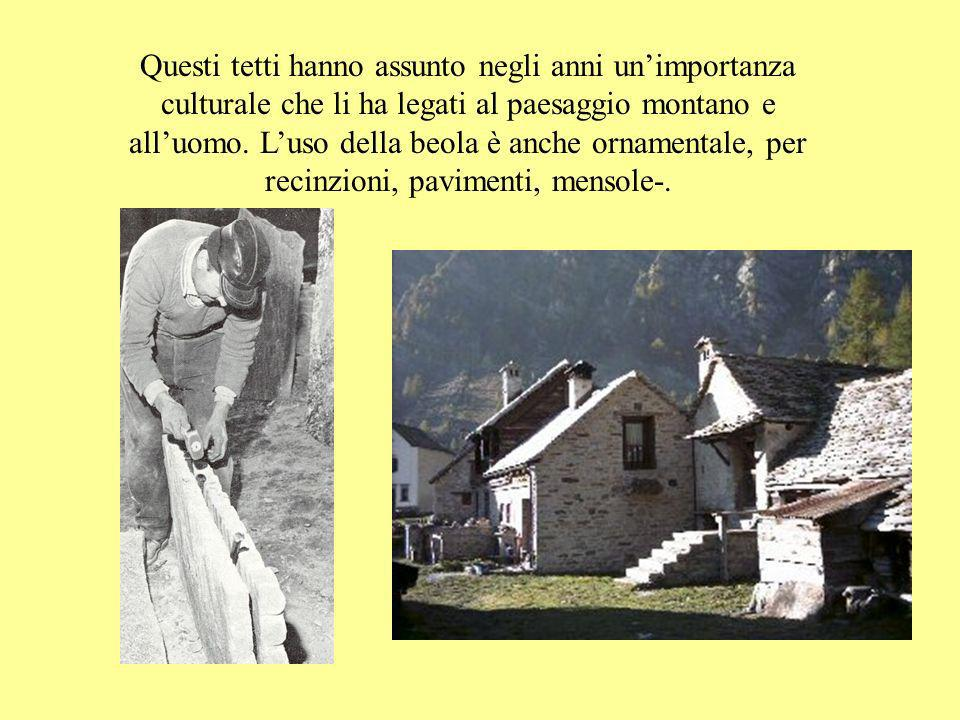 Questi tetti hanno assunto negli anni un'importanza culturale che li ha legati al paesaggio montano e all'uomo.