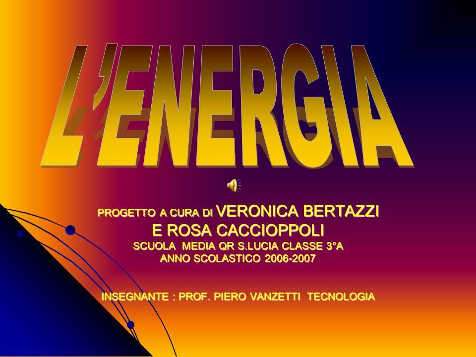 L'ENERGIA E ROSA CACCIOPPOLI PROGETTO A CURA DI VERONICA BERTAZZI
