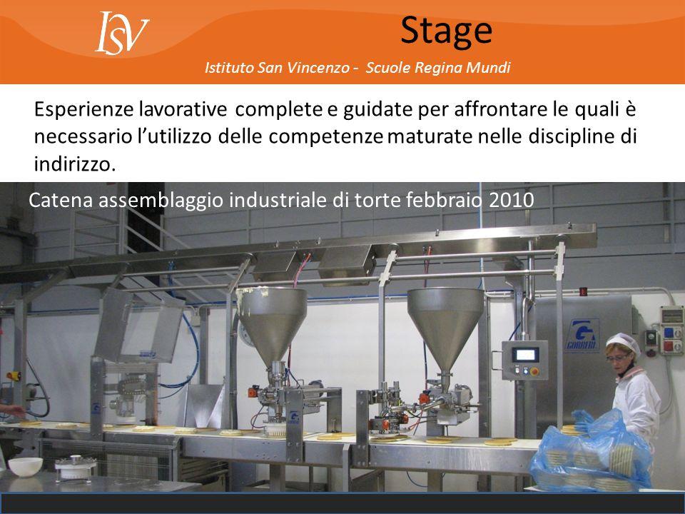 Istituto San Vincenzo - Scuole Regina Mundi