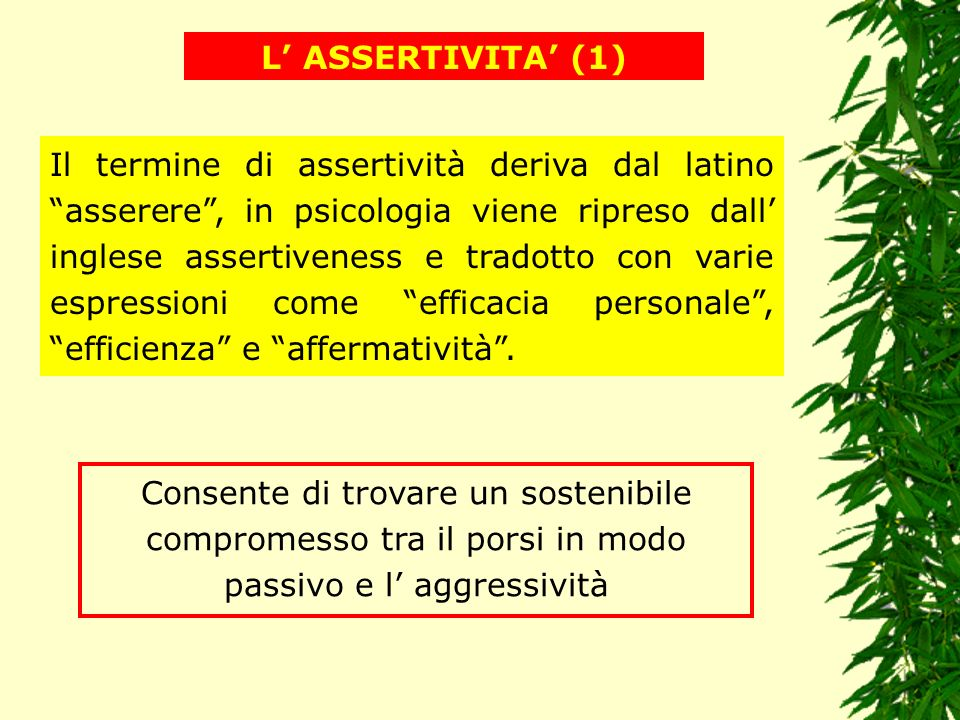 L' ASSERTIVITA' (1)