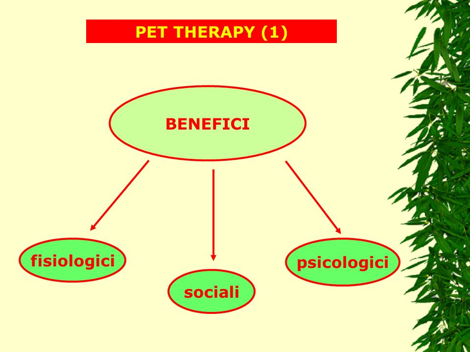 PET THERAPY (1) BENEFICI fisiologici psicologici sociali