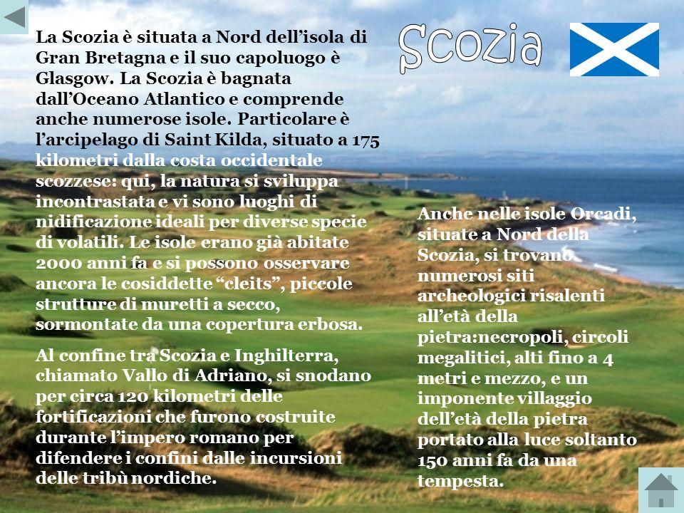La Scozia è situata a Nord dell'isola di Gran Bretagna e il suo capoluogo è Glasgow. La Scozia è bagnata dall'Oceano Atlantico e comprende anche numerose isole. Particolare è l'arcipelago di Saint Kilda, situato a 175 kilometri dalla costa occidentale scozzese: qui, la natura si sviluppa incontrastata e vi sono luoghi di nidificazione ideali per diverse specie di volatili. Le isole erano già abitate 2000 anni fa e si possono osservare ancora le cosiddette cleits , piccole strutture di muretti a secco, sormontate da una copertura erbosa.