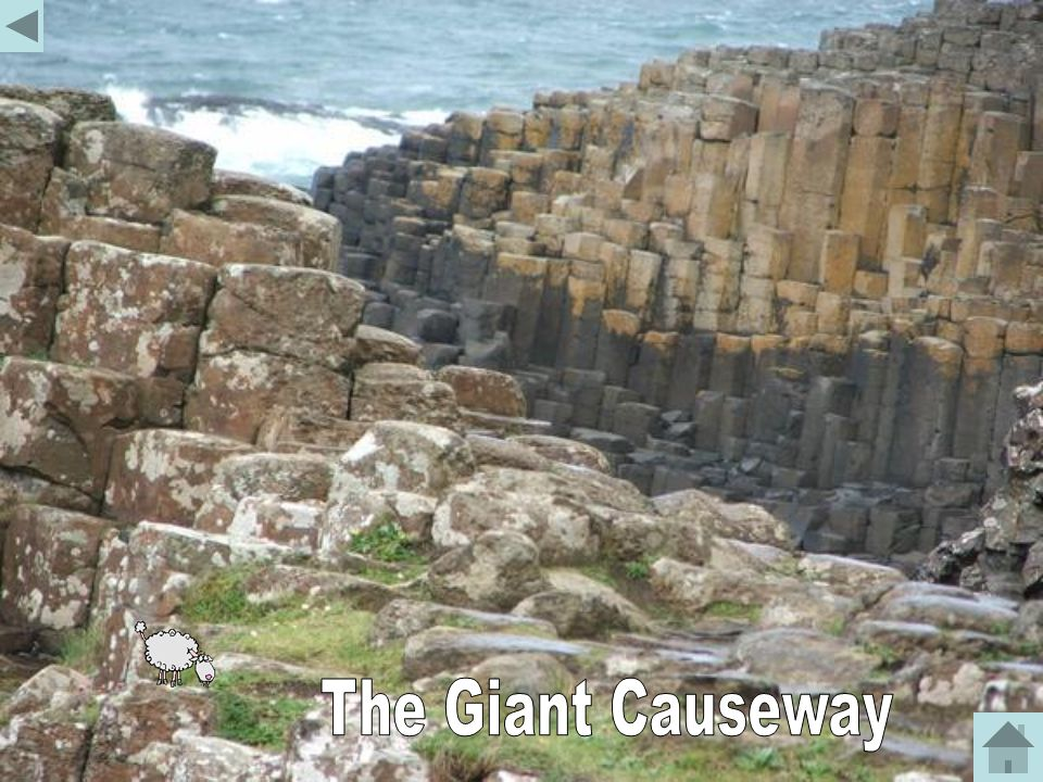 The Giant Causeway