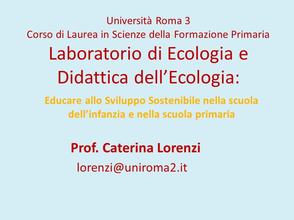 Prof. Caterina Lorenzi lorenzi@uniroma2.it
