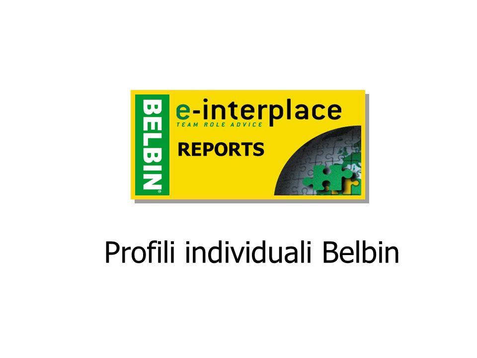 Profili individuali Belbin