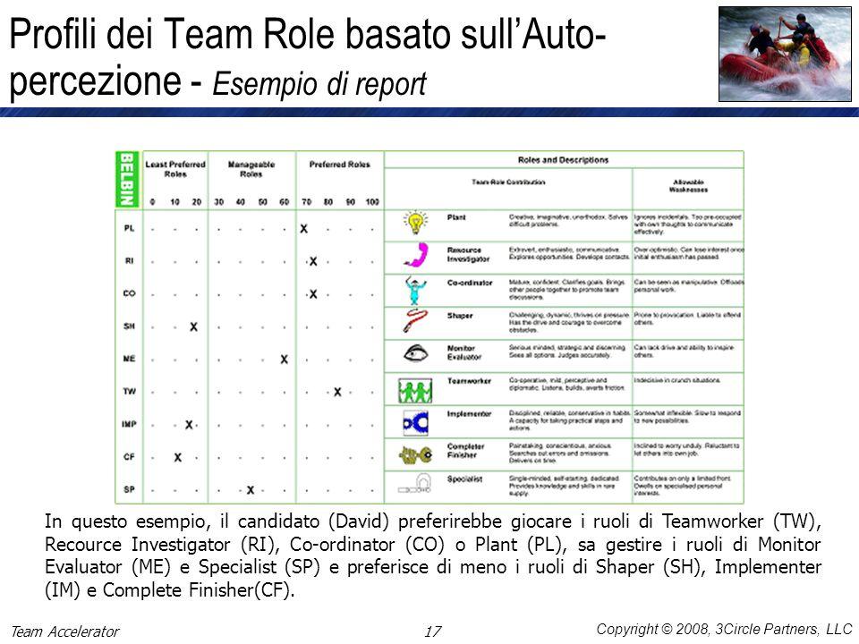 Profili dei Team Role basato sull'Auto-percezione - Esempio di report