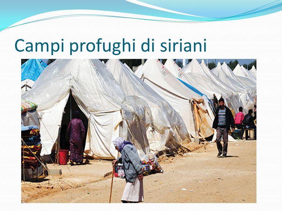 Campi profughi di siriani